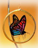 Butterfly Suncacther, Butterfly glass, art glass, Welsh art