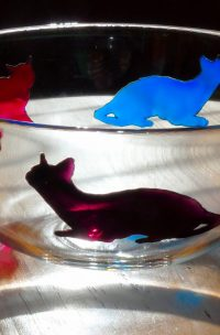 cats, cat glass, cat design, colourful cats, cats artwork