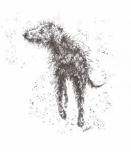 Finn, Deerhound, Deerhounds, Magig, Mighty Finn