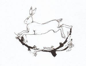 Winter, Hare, Winter Hare, Celtic Myths, Greyhound, Rubbish, Finn